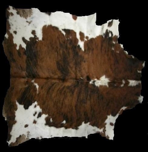 Polypropylene Rugs Animal Area Rug