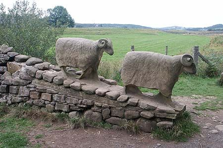 Stone sheep alongside the Pennine Way Between Low and High Force in Teesdale by Keith Alexander