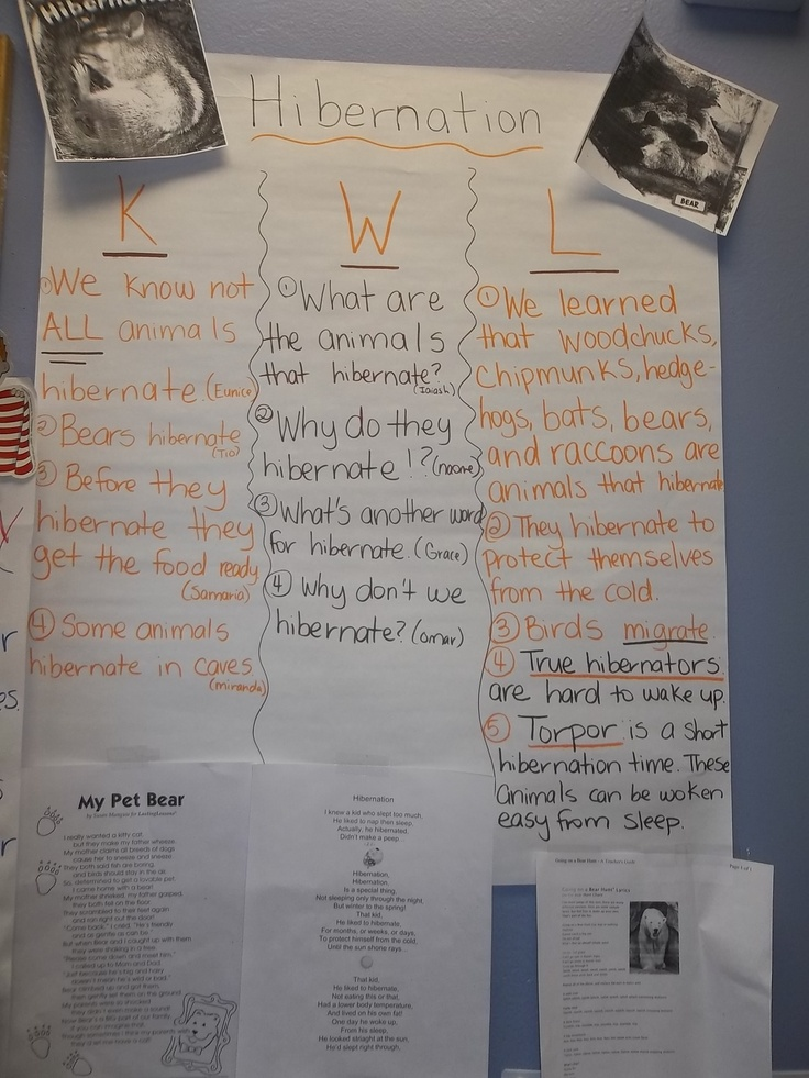 Classroom Ideas For Kindergarten ~ Hibernation k w l chart with poem attached