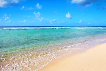 This 7 hour, scenic drive around Barbados will include several exciting spots and a delicious, Caribbean-style buffet lunch.