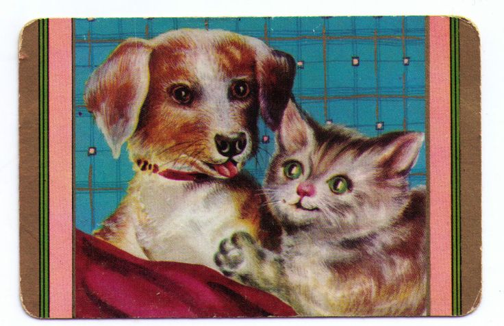 SWAP / PLAYING CARDS COLES UN-NAMED SERIES - CATS - FRIENDLY CAT & DOauction SOLD $22.00