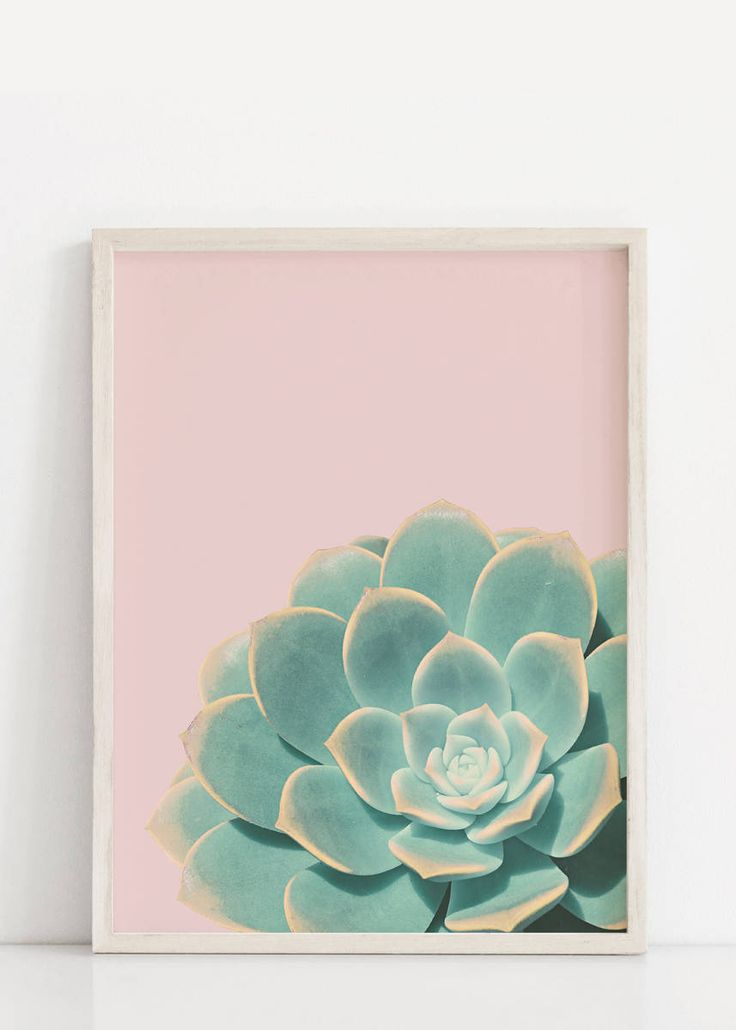 Excited to share the latest addition to my #etsy shop: Succulent Print,Succulent Poster,Plant Print,Tropical Print,Prints,Giclee Print,Succulent Wall Art,Wall Prints,Tropical Poster,Wall Decor http://etsy.me/2nDd9ki #art #print #giclee #green #housewarming #pink #succu
