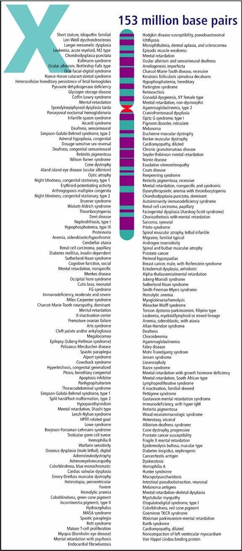 DNARSS.com : X Chromosome