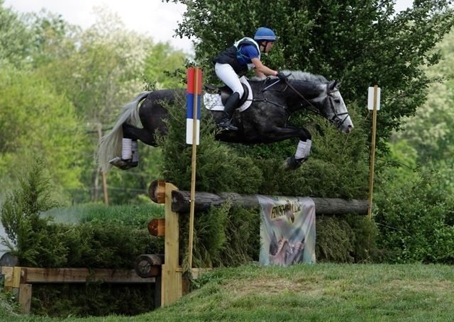 Cross Country Quotes >> Cross Country, always the favourite part of three day eventing! | Pets/Animals | Pinterest ...