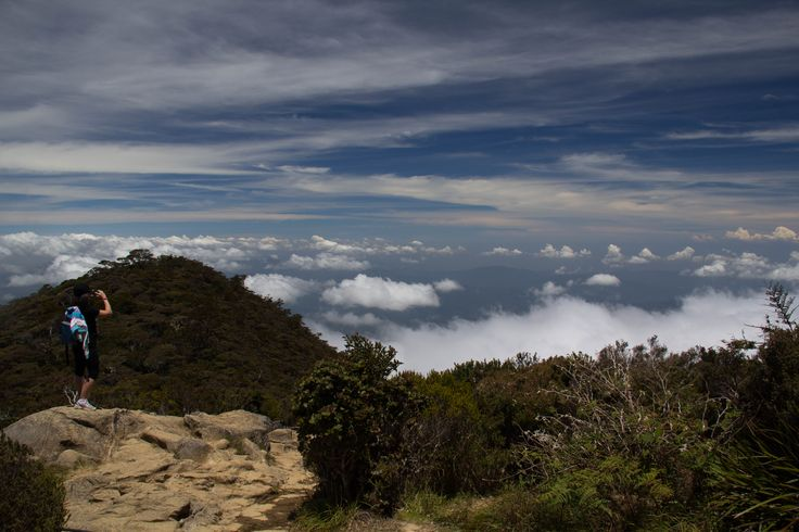 Just above the clouds, almost to the camp (so the guide says) not long to go :)