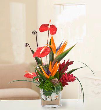 tropical flower arrangements | Hawaiian Bliss - Tropical Floral Arrangements - Beneva.com