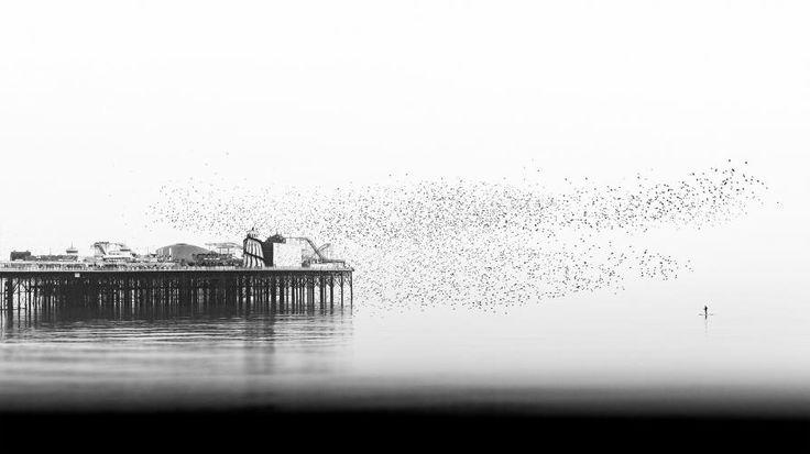 'Daydreaming' by Alessandro Intini http://www.celesteprize.com/artwork/ido:390813/ … Celeste Prize 2016 #FineArtPhotography