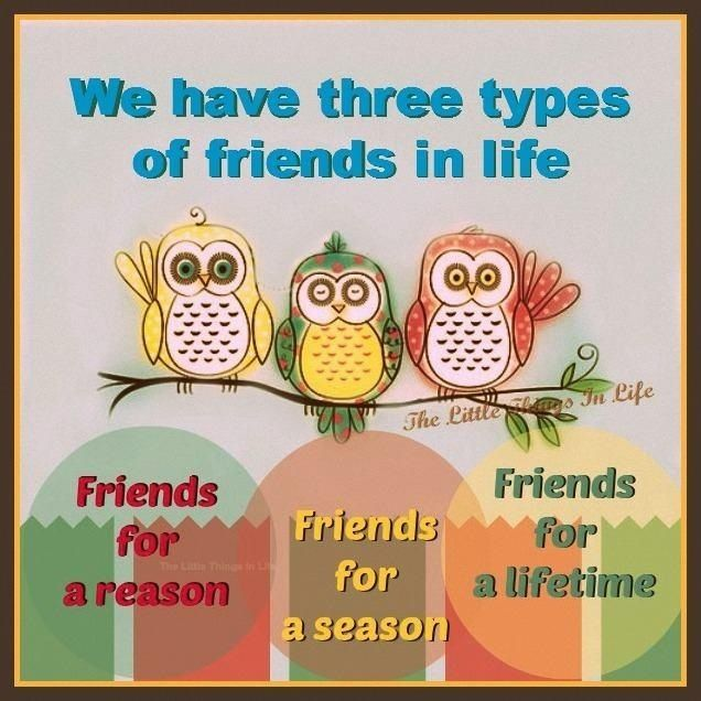 a classification of friends in three cathegories In life we come across many people some will hate us while others will adore us the ones who hate us can be referred to as enemies and the ones who show us adoration are referred to as friends there are three types of friends they are the aquaintinces we make in school, the friends we .