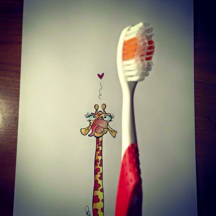 Giraffa innamorata di uno spazzolino da denti