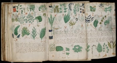 """The Voynich manuscript, described as """"the world's most mysterious manuscript"""",[3] is a work which dates to the early 15th century (1404–1438), possibly from northern Italy. It is named after the book dealer Wilfrid Voynich, who purchased it in 1912. The book contains herbal and medicinal information, and cosmological / astronomical information. Written in an unknown language or code, it's never been deciphered."""