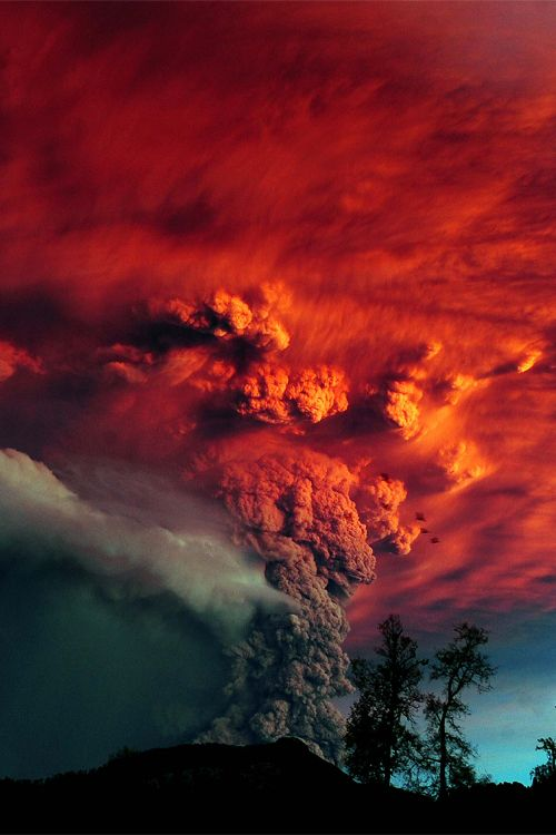A cloud of ash billowing from Puyehue volcano near Osorno in southern Chile, 870 km south of Santiago June 5, 2011. Puyehue volcano erupted for the first time in half a century prompting evacuations for 3,500 people as it sent a cloud of ash that reached Argentina, provoking big losses in estancias, closing of airports, etc.