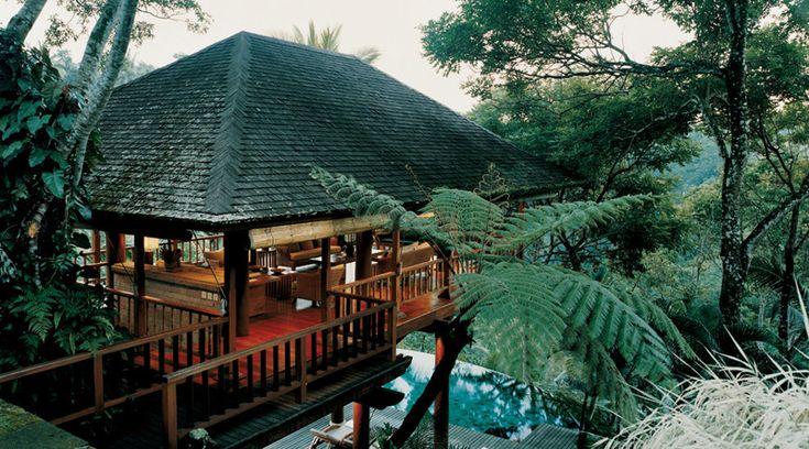 I really need to go to Bali.Shambhala Estate, Dreams Home, Favorite Places, Resorts, Trees House, Travel, Luxury Hotels, Como Shambhala, Bali Indonesia