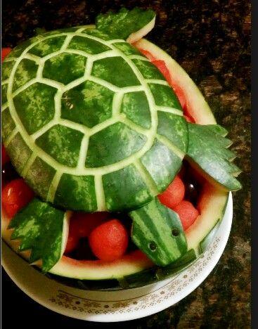 Cute turtle designs