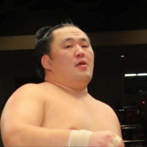 日馬富士、玉鷲に敗れる…横綱、大関の上位陣では照ノ富士と共に土 #相撲