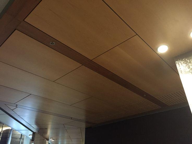 Ceiling ideas for iLandscape