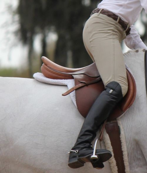 in another life i believe i was or will be an equestrian master. i just have this affinity for horses and riding gear