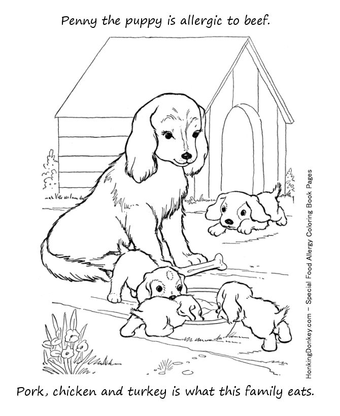 food allergy coloring page beef allergy