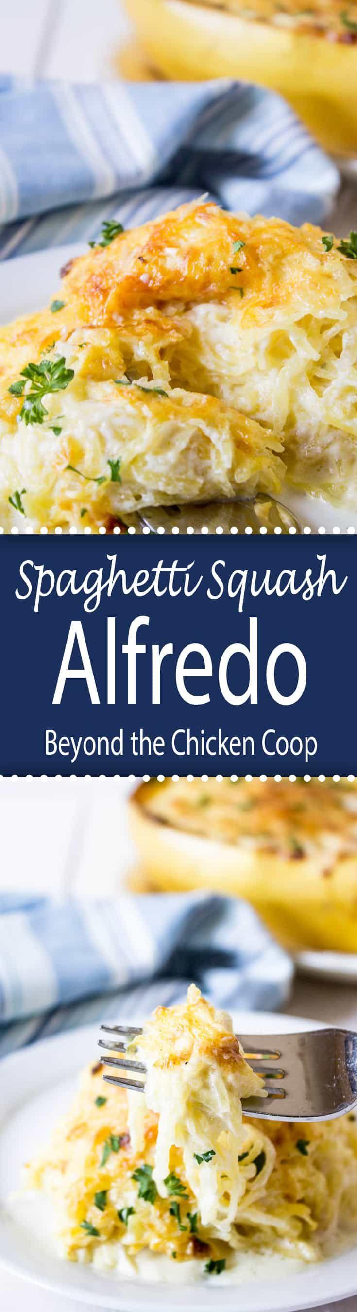 Spaghetti Squash Alfredo is cheesy and delicious.  #spaghettisquash #Alfredo #cheesybakedsquash #bakedspaghettisquash  via @Beyondthecoop