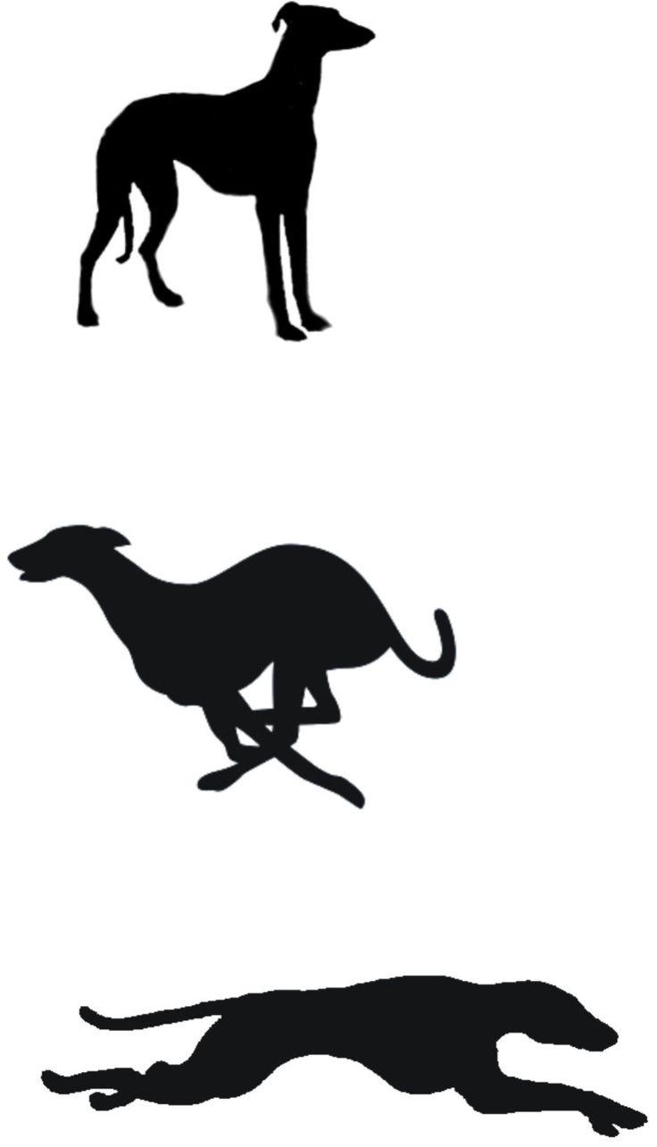 Google Image Result for http://daveengraves.com/images/greyhounds.jpg