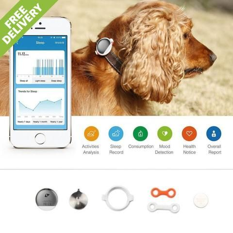 Now you can finally work out how active your pets really are.  An adapted and advanced sensor, P2 records pet activities 24/7, collects the information and sends it to the Cloud for calculations and analysis, and finally reports the pet's actual performance on the PETKIT APP.