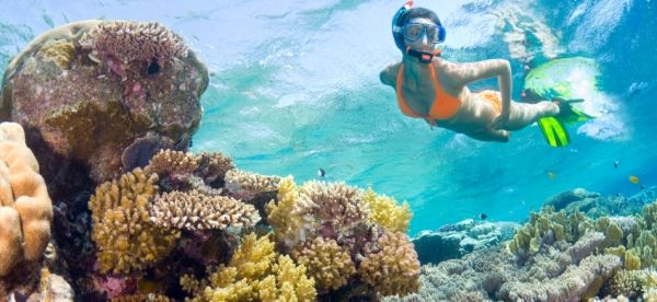 riviera maya playa - Buscar con Google
