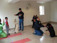 Corporación de Ayuda a la Familia de Carabineros de Chile