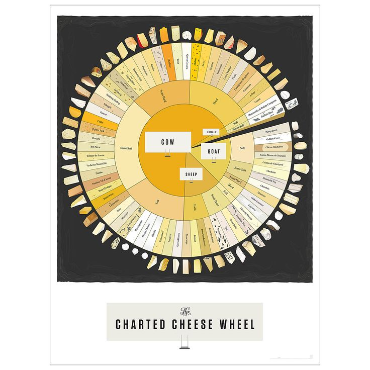 CHEESE POP CHART | poster, graphic design, wine and cheese, | UncommonGoods