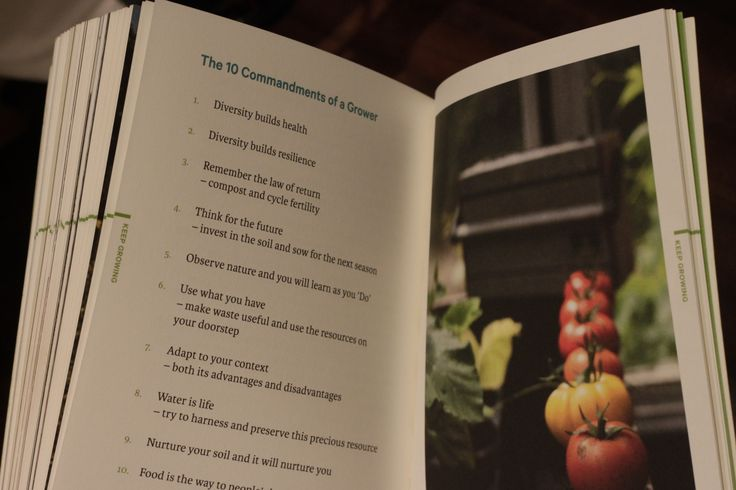 A bit of gardening wisdom from Do Grow: Start with 10 Simple Vegetables.