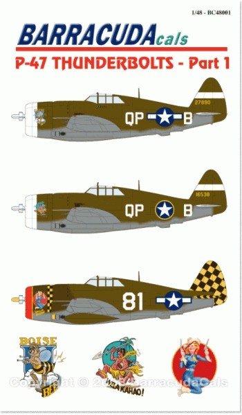 P-47 Thunderbolts - Part 1 - 1/48 Scale