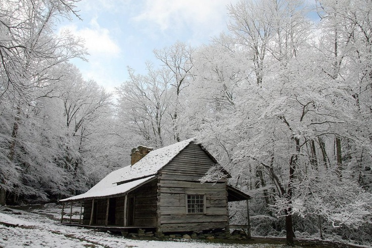 224 best great smokey mountain cades cove images on for Privately owned cabins in the smoky mountains