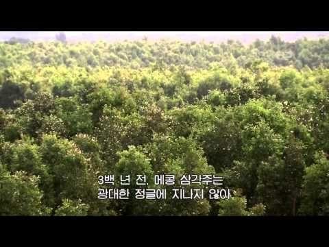 베트남 메콩강의 전설.avi