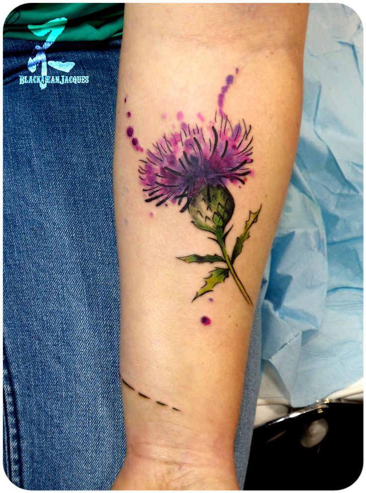 best 25 thistle tattoo ideas on pinterest scottish thistle tattoo scottish thistle and. Black Bedroom Furniture Sets. Home Design Ideas
