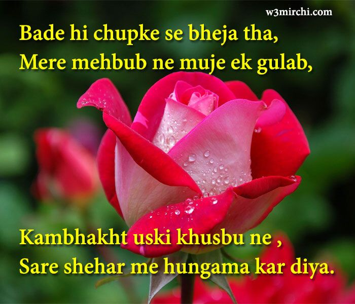 The Best Funny Shayari On Rose Flower In Hindi And Pics In 2020 Flowers Rose Rose Flower