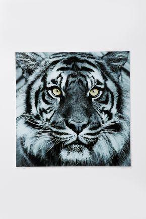 Schilderij Face of the Tiger. Animal Wild! Dit schilderij van het gezicht van een tijger is gedrukt achter glas. De afmeting van het schilderij is 80x80. Interesse?? Bekijk dan onze website www.wantandneeds.nl