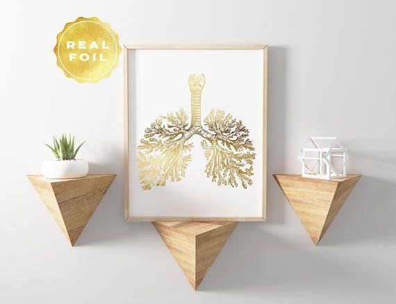 Anatomie pulmonaire impression dans votre choix de feuille d'or, or, argent ou rose. S'il vous plaît noter: Cadres non inclus (impression uniquement). Vous voulez acheter le jeu et d'économiser de l'argent aussi bien? Cliquez ici: