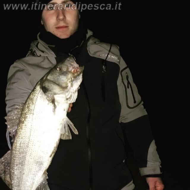 Porto Torres - Platamona - Spigola a surfcasting pesca fishing