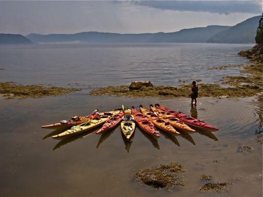 Excursion 3 jours en kayak de mer sur le Fjord du Saguenay. Venez vivre cette expérience exaltante guidée de 3 jours et tombez en amour avec le fjord et ses légendes, à vous détendre dans un havre de paix entouré d'une nature sauvage, insoumise, à faire connaissance avec les phoques, les bélugas et autres baleines, et à goûter notre gastronomie