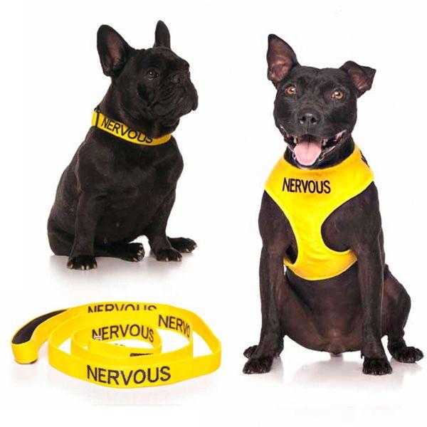 10% off medium yellow NERVOUS combo sets plus FREE SHIPPING within Australia. Models: French Bulldog & Staffy