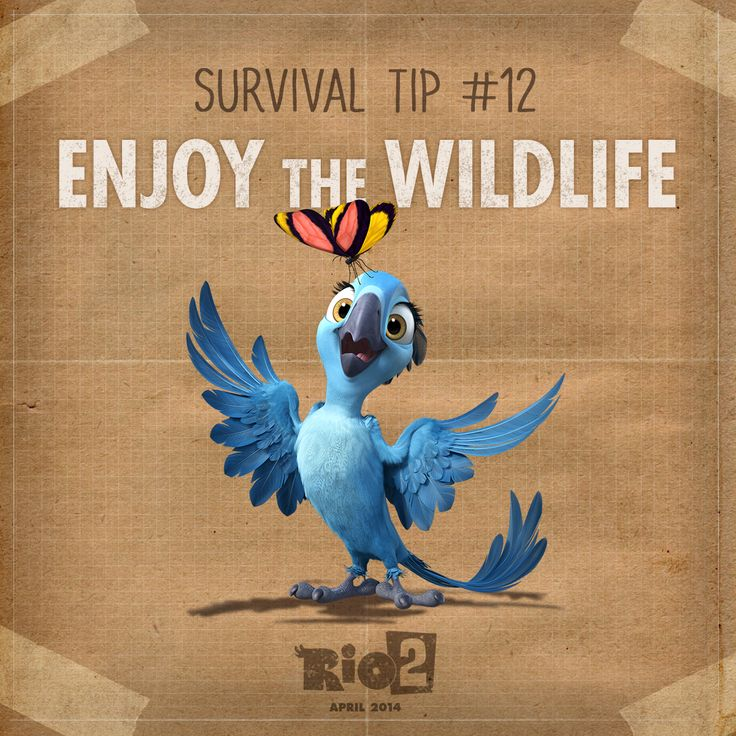 The beauty of nature is all around! #WesternUnion #Rio2 www.riomovies.com/