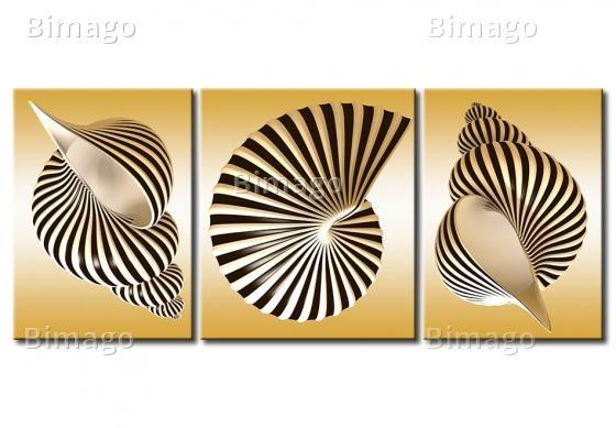 Conchiglie, Shelles, Canvas Art