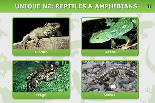 INTERACTIVE: Unique New Zealand. New Zealand's reptiles and amphibians have many unique adaptations and unusual life processes. Click on any of the animals to view short video clips and images to learn more.