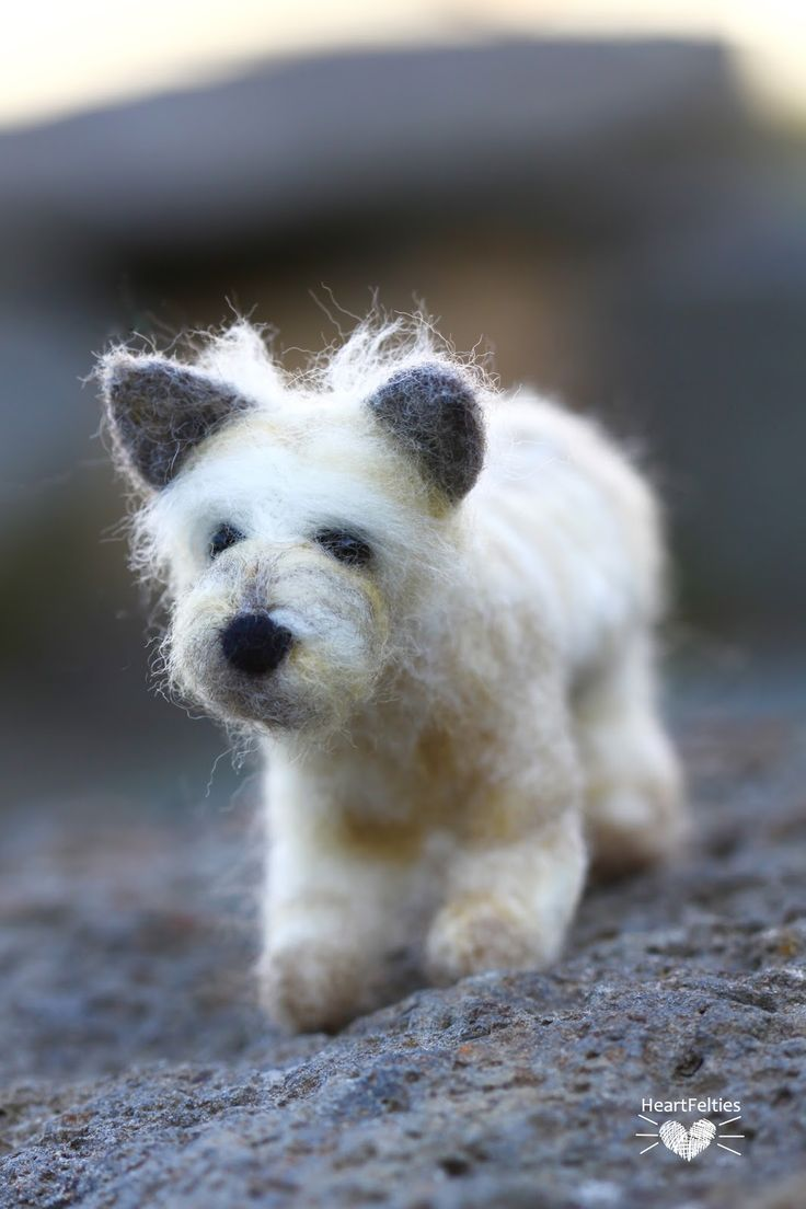 HeartFelties: So much hair - needle felted dog cairn terrier by Diana Steven