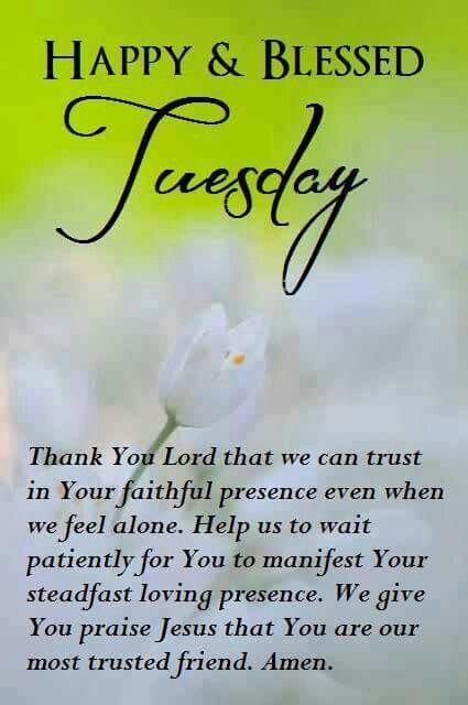 Happy And Blessed Tuesday good morning tuesday tuesday quotes good morning quotes happy tuesday tuesday blessings happy tuesday…