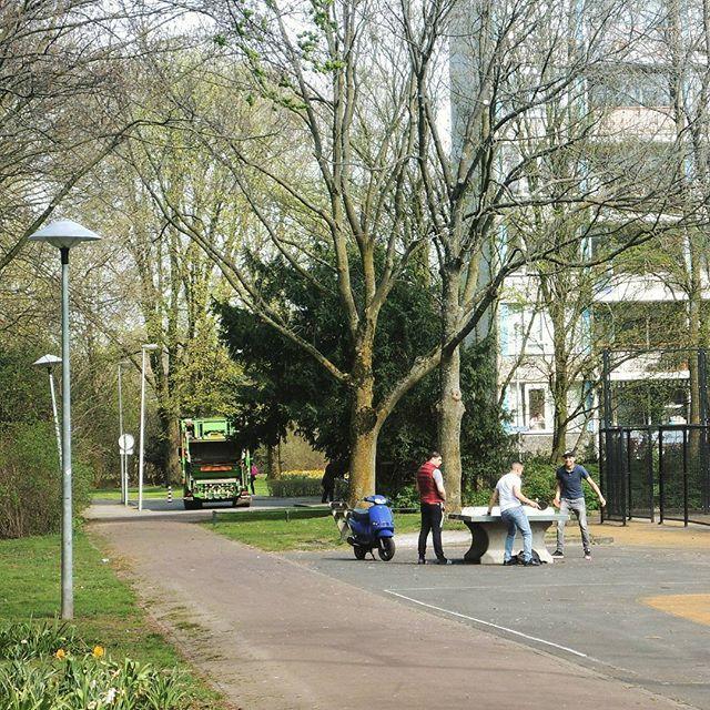 Chillen in Park de Gagel met een partijtje tafeltennis #Overvecht #ParkdeGagel #Utrecht