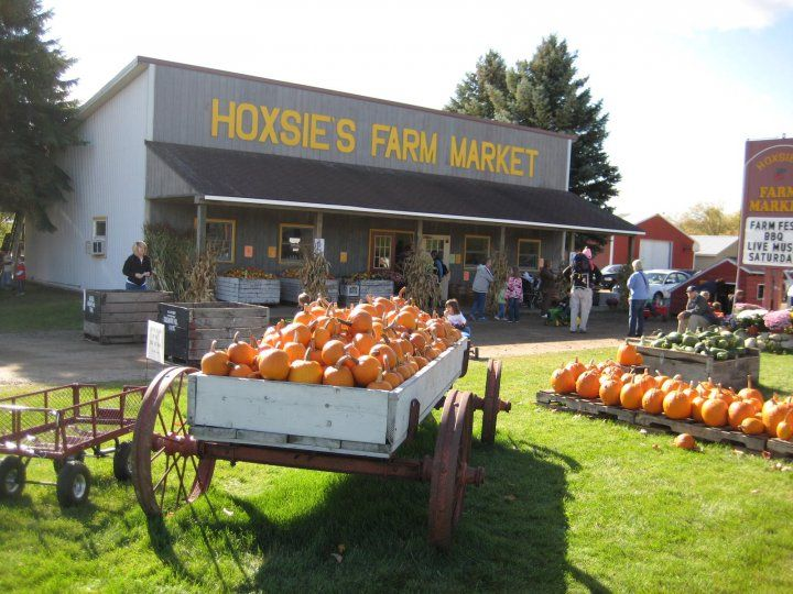 It's pumpkin time, people! Don't Miss These 10 Great Pumpkin Patches In Michigan This Fall