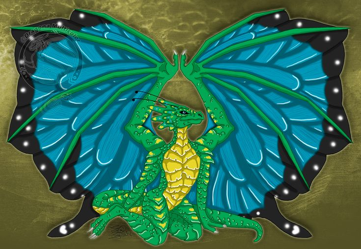 Dragonbutterfly, dragon