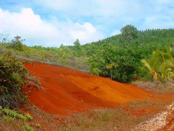 Ivirua, volcanic soil.  Good for growing pineapple.
