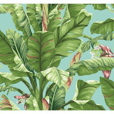 "York Wallcoverings Ashford Tropics 27' x 27"" Banana Leaf Wallpaper & Reviews | Wayfair"