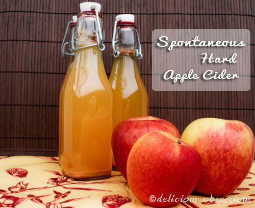 Fermented Apple Cider - Hard Apple Cider Recipe