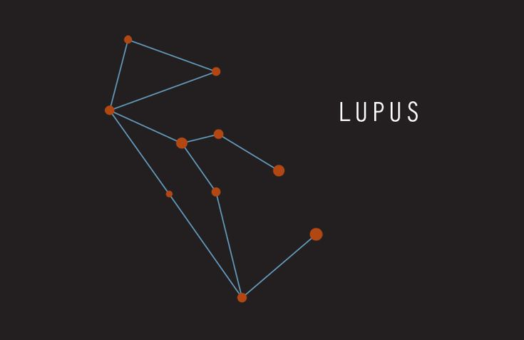 Lupus Constellation | Constellations - Lupus (Wolf) | my ...
